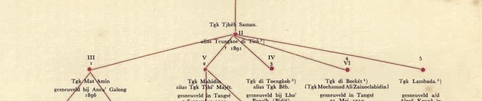 Silsilah, geneaologi atau nasab dari Tengku Chik Di Tiro.